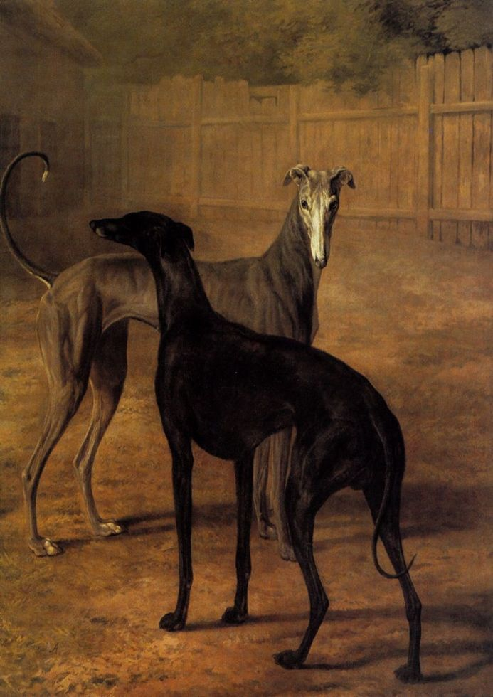 Agasse, Jacques Laurent: Rolla and Portia (Greyhounds). Fine Art Print/Poster. Sizes: A4/A3/A2/A1 (00652)